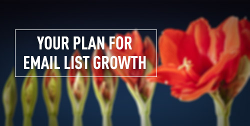 Your 6-Month Plan for Building a Powerful Email Marketing List