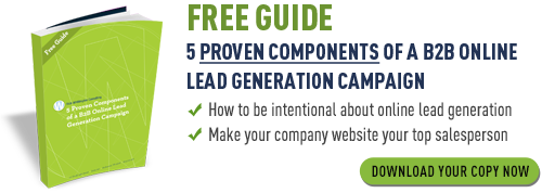 Free Guide - 5 Proven Components of a B2B Online Lead Generation Campaign